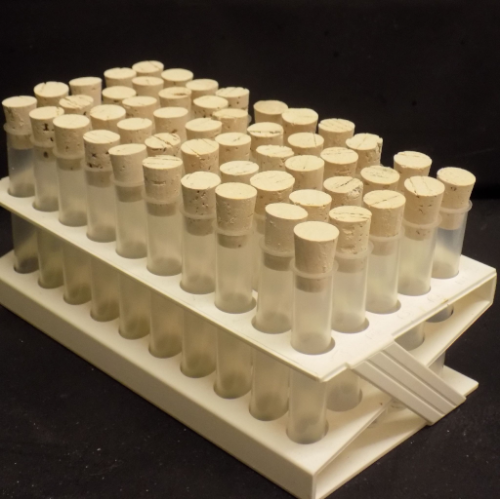 50 x 75 x 12mm PP rimmed  tubes with corks and tray
